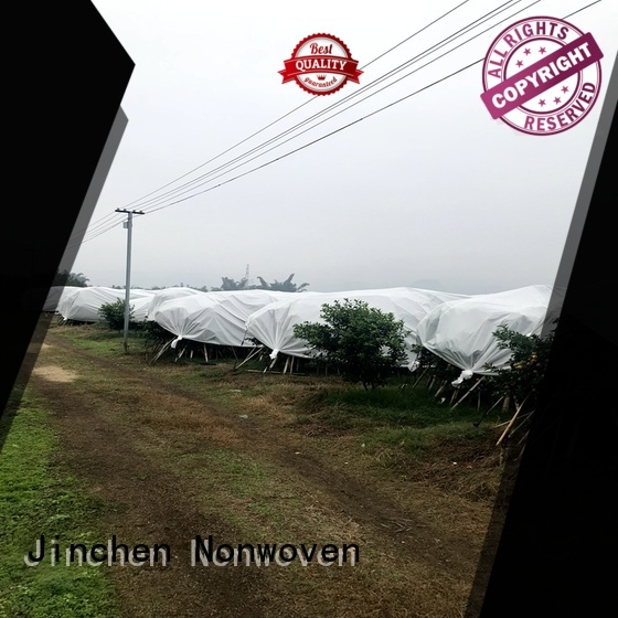 Jinchen spunbond nonwoven fabric fruit cover for tree