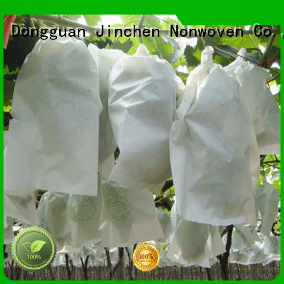 seedling non plastic carry bags package for supermarket