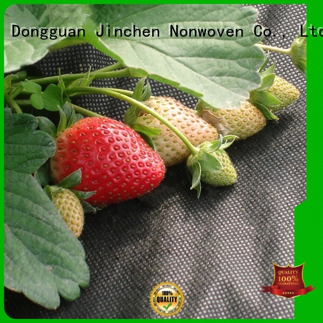 custom agricultural cloth fruit cover for greenhouse