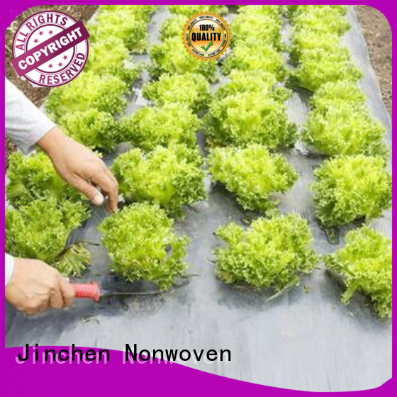 ultra width non woven sheet fruit cover for tree
