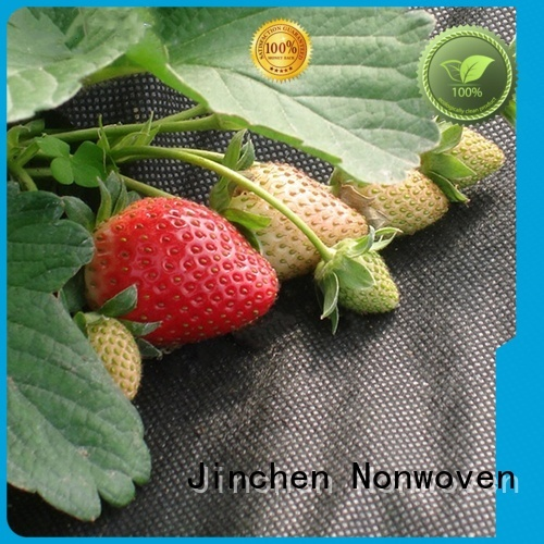 Jinchen top agricultural fabric suppliers fruit cover for tree