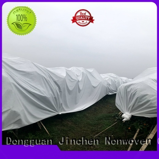 Jinchen spunbond nonwoven fabric landscape for tree